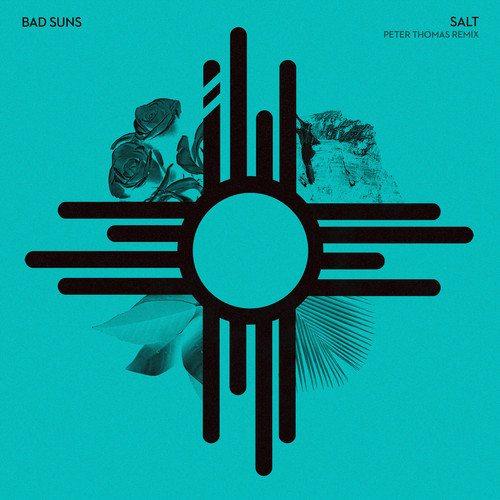 Bad Suns - Salt (peter Thomas remix)
