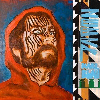 karl-blau-zebra